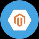 mag-module-dev